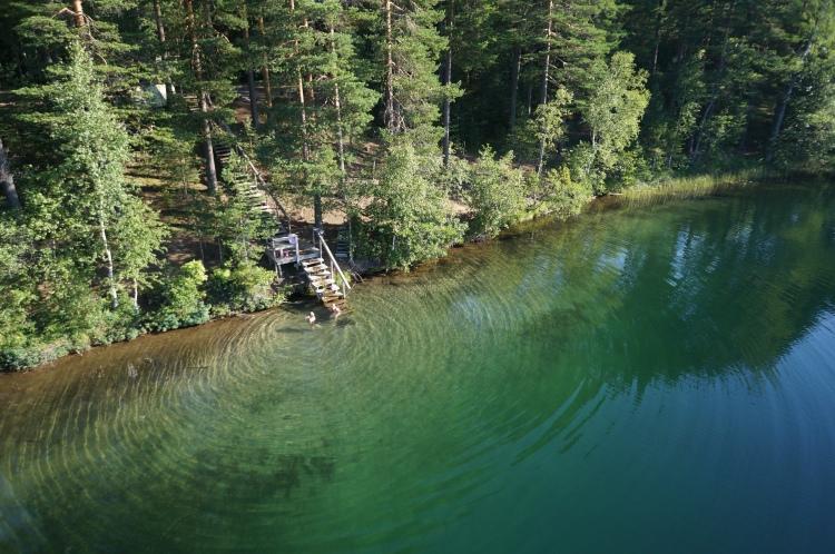 Puiset portaat jotka vievät metsästä järveen.