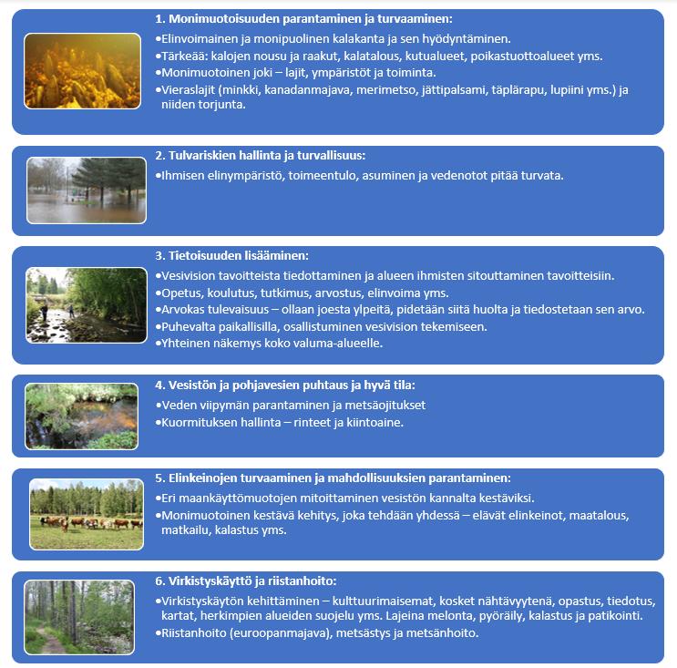 Kuviossa allekkain vesivision yhteiset päätavoitteet, joita on kuusi. Ensimmäisessä tavoitteessa monimuotoisuuden parantamisessa ja turvaamisessa nähdään tärkeiksi kalakantojen elinvoimaisuus, monimuotoinen elinympäristö ja vieraslajien torjunta. Tulvariskien hallinnassa tärkeäksi nähdään ihmisten elinympäristön, toimeentulon, asumisen ja vedenoton turvaaminen. Vesivision tavoitteista ja luontoarvoista tiedottamista sekä paikallisten sitouttamista yhteisiin tavoitteisiin pidetään tärkeänä. Neljäs tavoite keskittyy vesistön ja pohjaveden hyvä tilan saavuttamiseen, johon pyritään veden viipymän parantamisella, metsäojituksilla ja kuormituksen hallinnalla. Elinkeinojen turvaaminen ja mahdollisuuksien parantaminen, kuten maankäyttömuotojen mitoittaminen vesistön kannalta kestäväksi ja yhdessä toteutettu monimuotoinen kestävä kehitys nähdään tärkeinä toimenpiteinä Vesivision tavoitteissa. Virkistyskäyttö ja riistanhoito nähdään kuudentena tavoitteena. Virkistyskäytön kehittäminen kohdistuu kulttuurimaisemiin, koskiin, nähtävyyksinä, opastukseen, tiedotukseen, karttoihin ja suojeluun. Lajeina melontaa, pyöräilyä, kalastusta ja patikointia kehitetään. Riistanhoidossa keskitytään euroopanmajaviin, metsästykseen ja metsänhoitoon.
