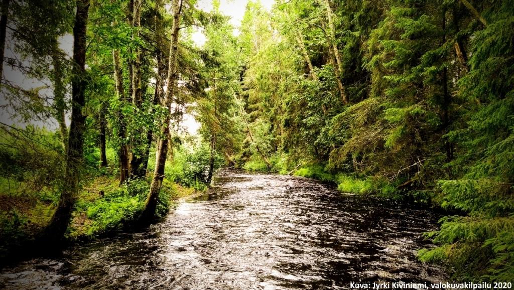 Metsämaisema, jossa vuolaasti virtaava joki. Kuva: Jyrki Kiviniemi, valokuvakilpailu 2020.